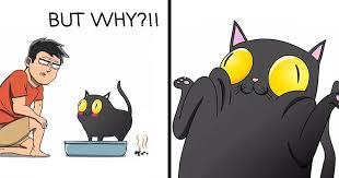 30 <b>Comics</b> That Show What Living With A <b>Cat</b> Is Really Like | Bored ...