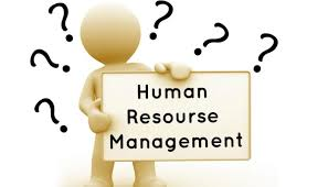 6 Benefits Of Studying Human Resource Management Student Brands