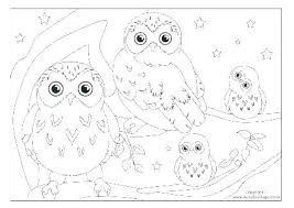 Snowy Owl Coloring Pages Owl Coloring Picture Barn Owl Coloring