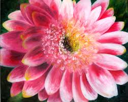 gerbera daisy flower print of original oil painting by lindsey bright pink