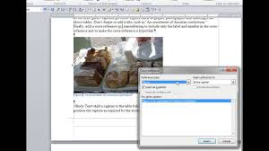 Add Captions And Cross References In Word
