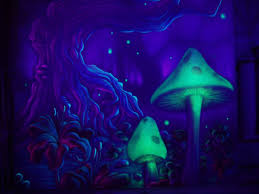 Image result for trippy widescreen wallpapers