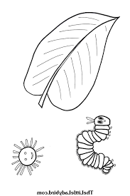 Very Hungry Caterpillar Coloring Page 9ncm Confidential Very Hungry
