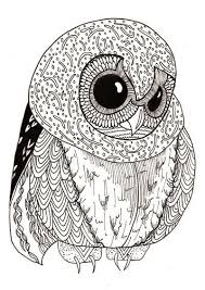Small Picture 25 best coloring pages owls images on Pinterest Coloring books