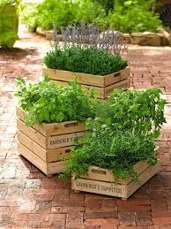 wooden planter boxes wooden planter boxes nz small wooden planter boxes for wooden planter