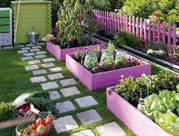 backyard gardening. Backyard Gardening I