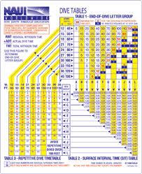 11 Scientific Scuba Dive Chart