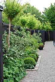 tips on choosing a colour to paint your homes boundary fence and garden beds