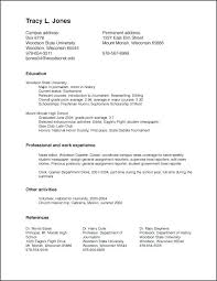 Resume Set Up Impressive Resume Setup How To Set Up A Resume On How To Write A Resume For A