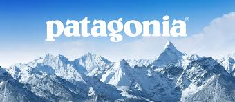 「PATAGONIA」の画像検索結果