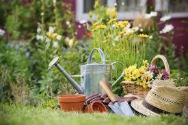 basics of gardening for beginners. gardening basics for beginners of