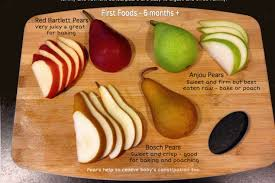 Puree Wholesome Baby Food Guide
