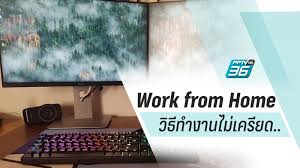Work from Home แปลว่า : PPTVHD36