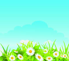 grass and sky backgrounds. Summer Blue Sky Backgrounds Vector Grass And