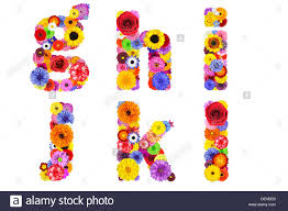 floral alphabet isolated on white six letters g h i j k l made of DEKBEB
