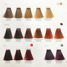 Milkshake Toner Chart Details About Z One Concept Milk Shake Smoothies Color 100ml Conditioning Semi Permanent Color