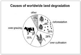academic ielts writing task sample why agricultural land  pie chart causes of worldwide land degradation