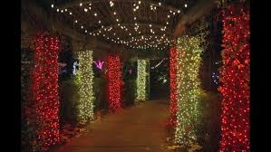 we found 70 images in jacksonville zoo lights gallery