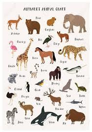 Alphabet Animal Chart Set Isolated Vector Illustration Abc For