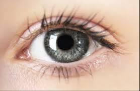 Image result for चश्मा हटाएँ आँखो की रोशनी बढ़ाएँ