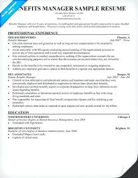 Best Construction Project Manager Resume Sample Great Example ...