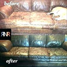 conditioning leather couches leather couch cleaning service in cape town conditioner care of sofas home improvement