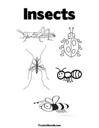 Small Picture 70 best INSECTS images on Pinterest Spring Coloring pages for