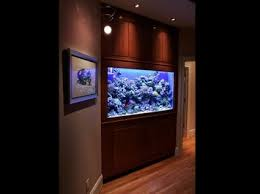 fish tank office. quality aquarium services in richmond fish tank office