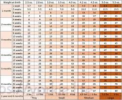 Kitten Growth Chart Kitten Growth Chart Weight Kg Bedowntowndaytona Com