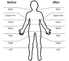 Simple Body Measurements For Progress Tracking Body Chart
