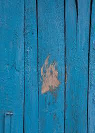 blue barn wood. Download Natural Blue Barn Wood Wall. Stock Photo - Image Of Design, Brown: