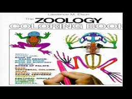 watch inspirational zoology coloring book