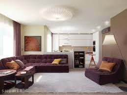 Modern Living Room Color Living Modern With Nature Tones Color Blasts