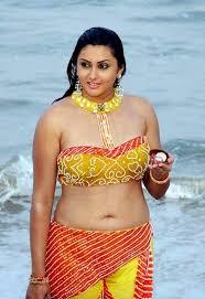 Sexy Telugu Actress Saree Blouse Photos