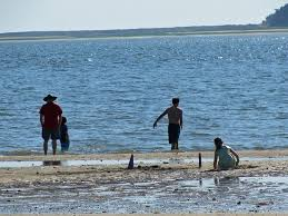 Tide Chart Cape Cod Wellfleet Family Grouping At Mid Tide Picture Of Indian Neck Beach