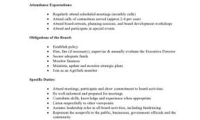 Npo102 Nonprofit Cfo Job Description Template Executive Director ...