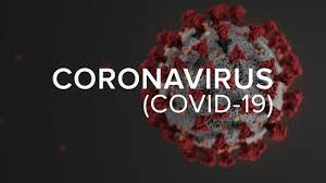 MS apresenta queda no número de novos casos de COVID19 | JPNEWS