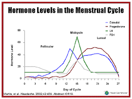 Hormone Level Chart During Menstrual Cycle