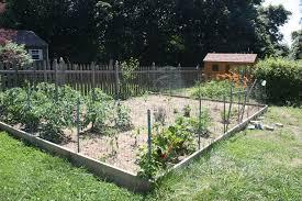 chicken wire fence ideas. Graceful Chicken Wire Fence Vegetable Garden . Chicken Wire Fence Ideas E