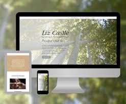 Acupuncture Web Design Samuel Castle Web Design Graphic Design Illustration
