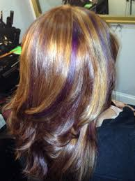 Brown Hair With Blonde And Purple