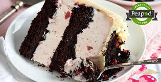 Chocolate Crunch Strawberry Ice Cream Cake Recipes Peapod