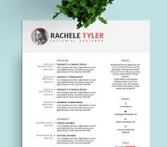 Resume Templates Free Interesting FREE InDesign Resume Template StockInDesign