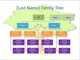 Family Tree Organizational Chart Template Family Tree Chart Template Powerpointfor 2018 The Highest