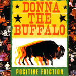 In Another World by Donna the Buffalo