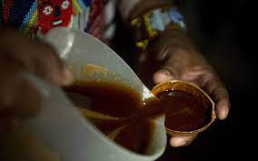 Legal Ayahuasca Retreat To Open in the ...
