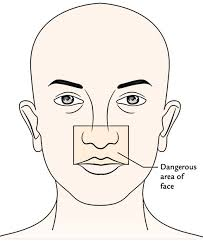 face anatomy easy notes on face anatomy learn in just 4 minutes