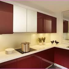 modern cabinet door style. Modern Kitchen Cabinets Doors Styles Greenvirals Style Cabinet Door D