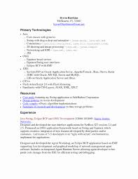 Resume Format For Experienced Software Business Letters Examples