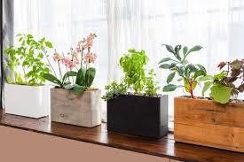 balcony vegetable garden ideas for apartments